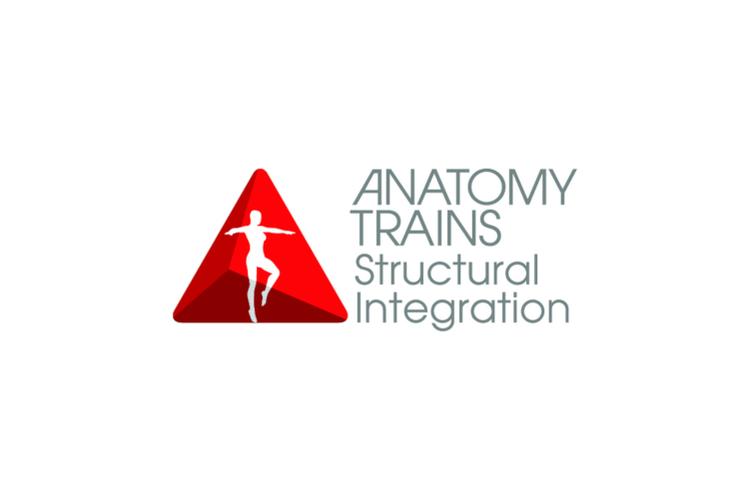 www.anatomytrains.com